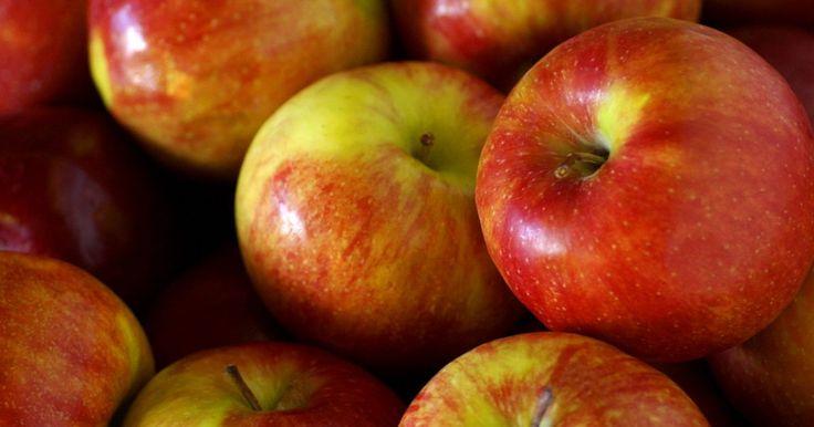 Dieta de tres manzanas al día . El plan de 3 manzanas al día es un método para perder peso comiendo de forma diferente, en vez de comer menos. La dieta requiere un cambio de hábitos por siete días. No te confundas por el nombre de la dieta; necesitarás comer más que sólo manzanas para seguirla. Abastécete de manzanas si quieres probarla. Necesitarás por lo menos tres manzanas ...