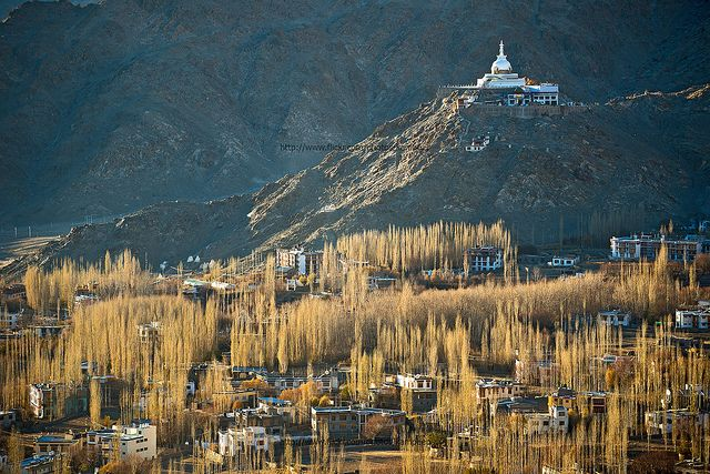 Beautiful Scenic View of Leh Valley with Buddhist Monastery on Hill-top, Ladakh, Jammu & Kashmir, India - Flickr - Photo Sharing!