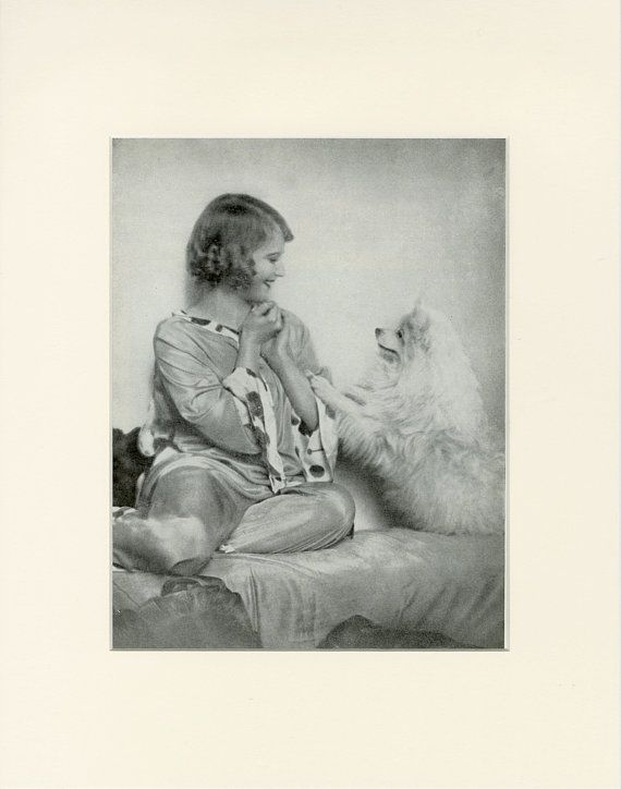 """Matted Vintage Dog Print """"Spitz and Prima Ballerina Maria Murdszenty"""" from Hutchinson's Dog Encyclopedia C. 1934 Matted"""""""
