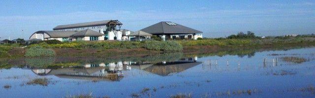 The Living Coast Discovery Center - Chula Vista