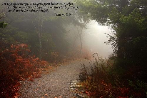 A morning walk with God: Purpo Prayer, Paths, Daily Prayer, Walks Humble, Inspiration Christian, Mornings Walks, Photo, Inspiration Quotes, Prayer Life How