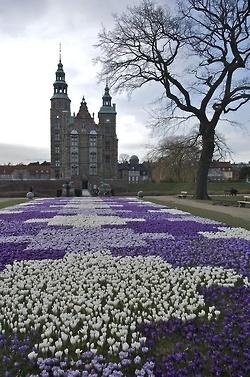 Patchwork baroque purple garden. Also visit: www.asiahomegarden.com