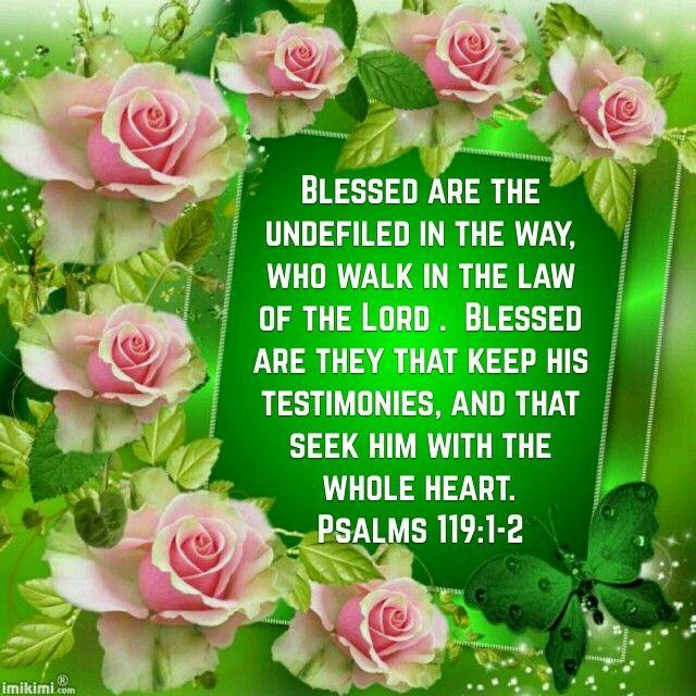 Psalms 119: 1-2 (KJV)