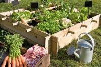"""Vierkante Moestuin – Moestuinder – Niets zo lekker als vers gekweekte groenten en kruiden uit eigen tuin. Met de vierkante moestuin kan iedereen zelf telen, want hij past in elke kleine tuin, op het terras en zelfs op het balkon. Andijvie, sla, radijs, wortelen en ga zo maar door...kweek zestien lekkere soorten op één vierkante meter! Tuinieren op de """"square foot"""", ook wel 'flexibel'..."""