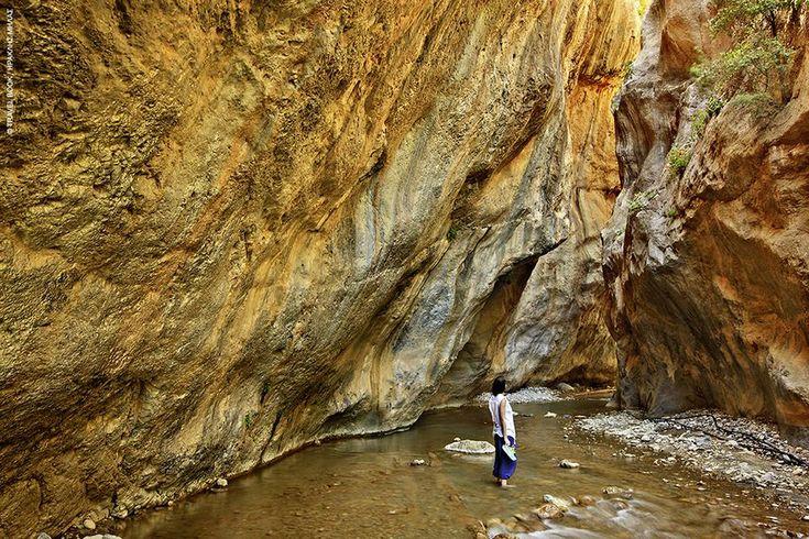 Φαράγγι Σαρακήνας –Λέγεται και φαράγγι του Σαραντάπηχου από τον ομώνυμο γίγαντα που περνώντας το όρος Δίκτη, το έσχισε στα δύο με τη γενειάδα του σκύβοντας στο ποτάμι να πιει νερό. Σε μήκος δεν ξεπερνάει το 1,5 χλμ., Είναι πλούσιο σε βλάστηση, έχει πάντοτε νερό (τον χειμώνα θεωρείται απροσπέλαστο), ενώ ο Κρυοπόταμος που το διατρέχει, σχηματίζει κατά τόπους καταρράκτες και λιμνούλες. Η ανάβαση στα γιγαντιαία βράχια γίνεται από λαξευμένα σκαλιά.