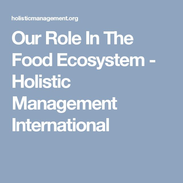 Our Role In The Food Ecosystem - Holistic Management International