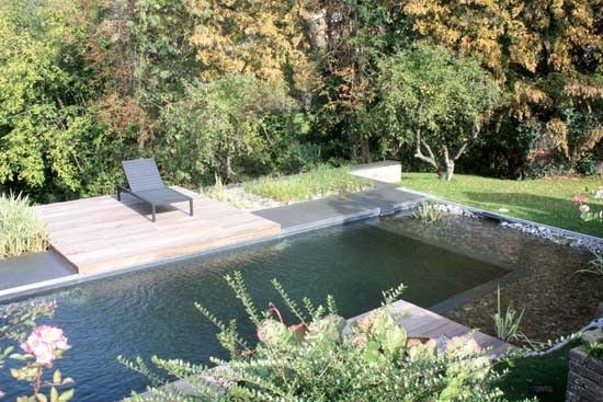 50 Best Pool Of My Dreams Images On Pinterest Natural Pools Natural Swimming Pools And Ponds