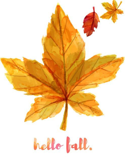Today's officially the first day of fall!!