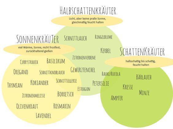 Die 25+ Besten Ideen Zu Pflanzen Schatten Auf Pinterest ... Welche Blumen Im Schatten Garten Pflanzen