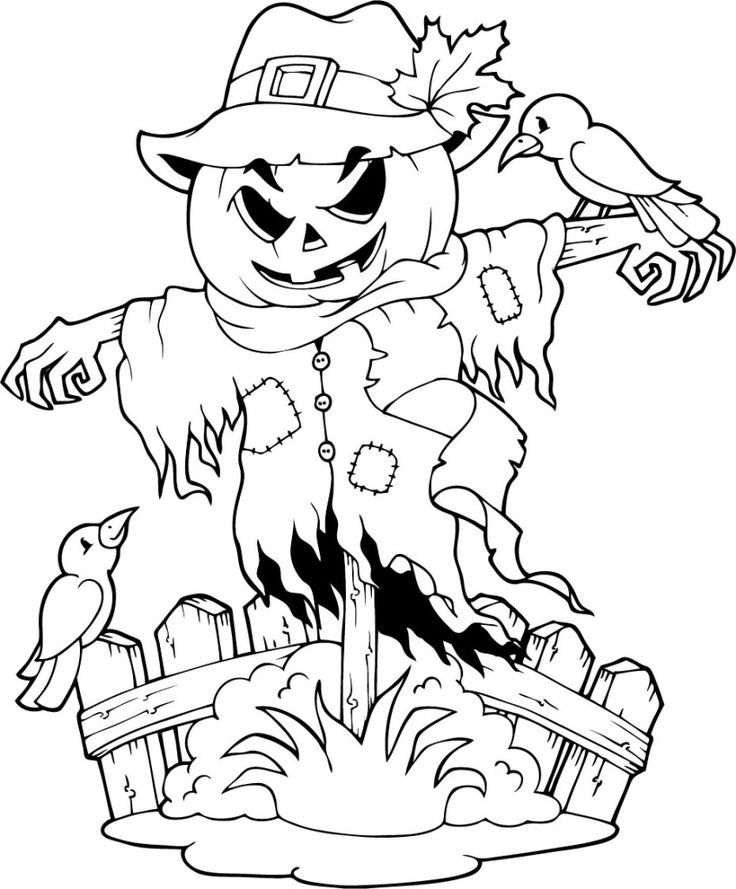 """64 best icolor """"scarecrows"""" images on pinterest  coloring"""