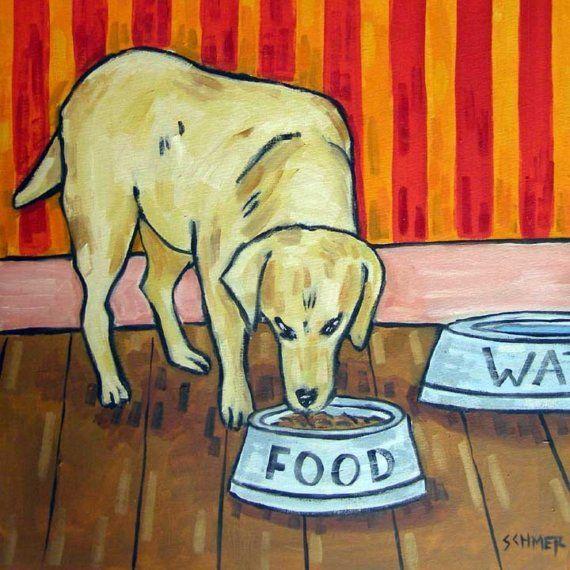 Golden Retriever Essen aus einer Schüssel Hund Art von SCHMETZPETZ