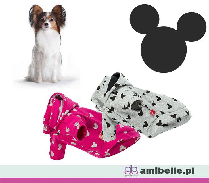 W chłodniejsze dni małe psiaki mogą zmarznąć. W naszych bluzach jesienne chłody nie będą groźne.  www.amibelle.pl