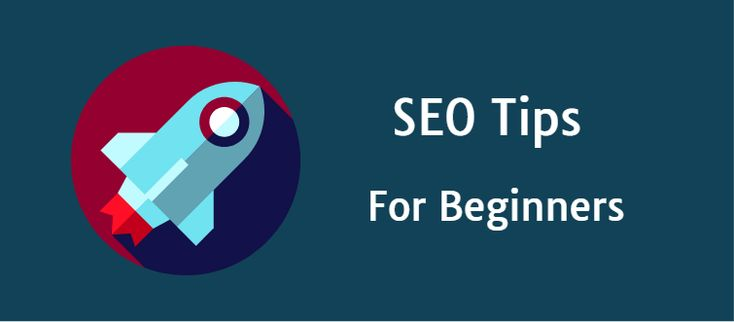 SEO Tips For Beginners - How To Construct An SEO-Friendly Article