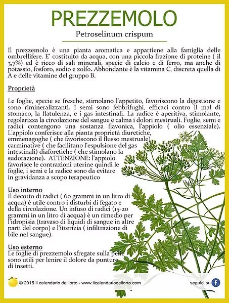 Il Calendario dell'Orto | Piante aromatiche