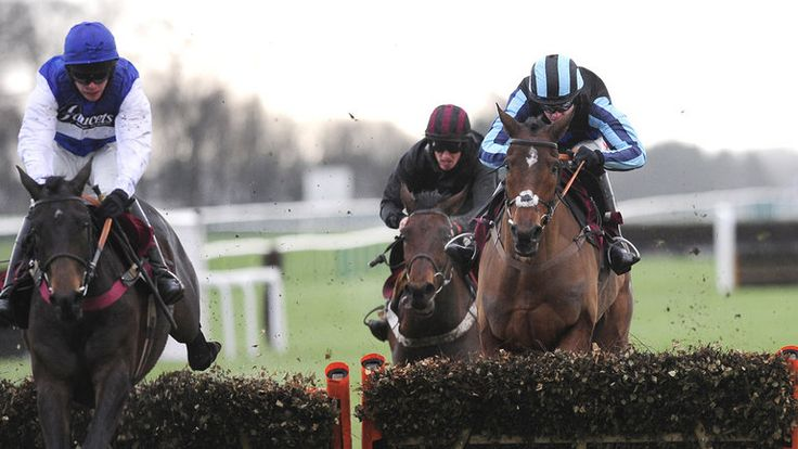 Aso reigns Supreme at Haydock - Horse Racing - Erupt Sports