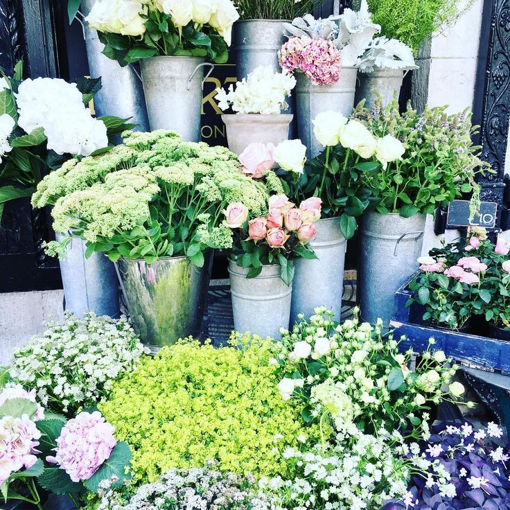 Cada vez queda menos para que llegue septiembre y me da una pena...Todo el año trabajando para que las vacaciones terminen pasando demasiado rápido...¡Por cierto, el día 1 el blog vuelve de vacaciones! #flowers #flores #londres #london #superga #liberty #libertylondon #picoftheday #instapic #instaflowers #beautyblog #beautyblogger #fashionblog #fashionblogger