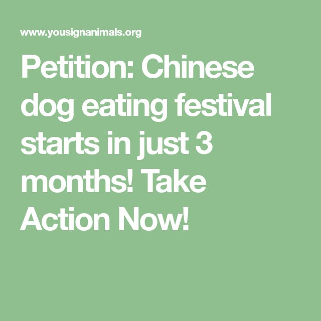 Petition: Chinese dog eating festival starts in just 3 months! Take Action Now!