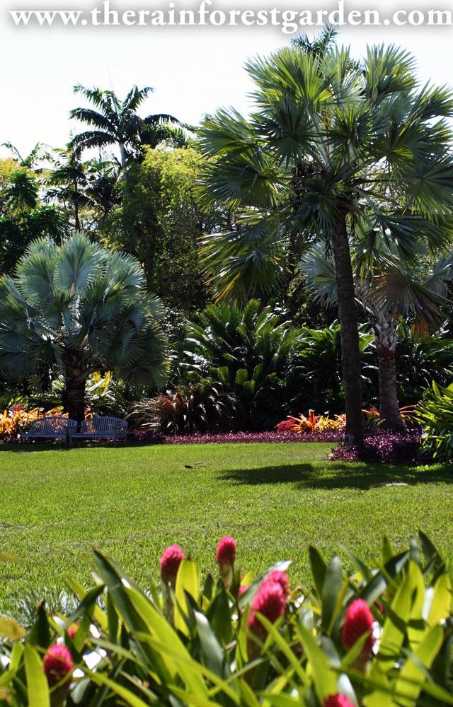 Rainbow colored garden by Raymond Jungles at the Fairchild Botanical Garden