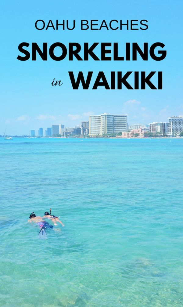One of the best beaches in Waikiki for snorkeling. For US beaches in Oahu Hawaii, activities like swimming and snorkeling in Waikiki at Queen's Beach on Oahu! Best Oahu beaches give you things to do with nearby hiking trails, food, and shopping. USA travel destinations for bucket list for world adventures when on a budget! So put Waikiki snorkeling on the Hawaii itinerary! Packing tips for snorkeling gear with what to wear in Hawaii too.