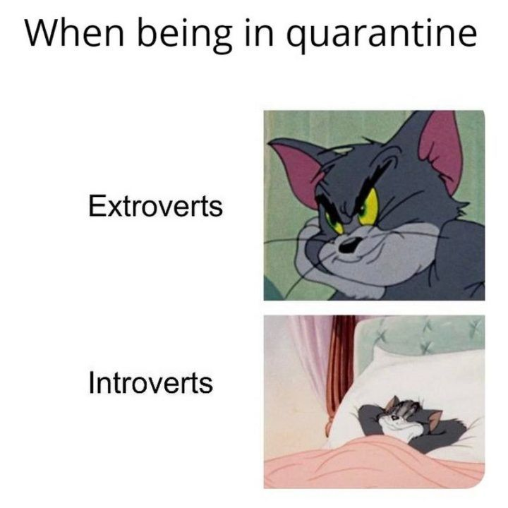 Pin On Introvert Quotes And Memes