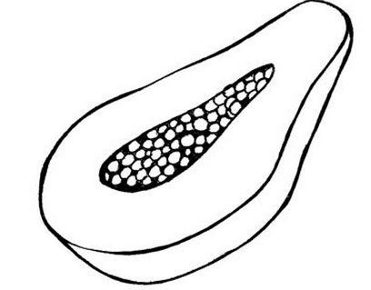 Desenhos de Frutas para Colorir - Desenhos para Imprimir de Frutas