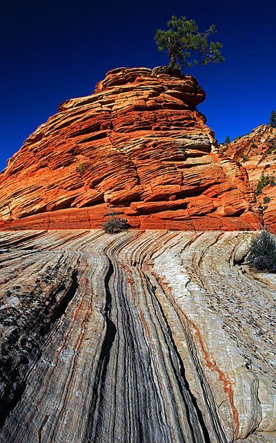 Sandstone ridges on the Zion plateau; photo by .Jason Branz