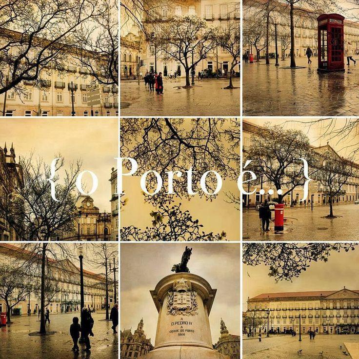 o Porto é... chuva dourada