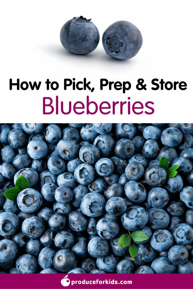 How to Pick, Prep & Store Blueberries + nutrition information, recipes, fun facts and more!
