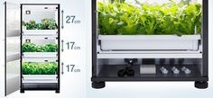 U-ING Green Farm Tri-Tower Hydroponic Grow Box