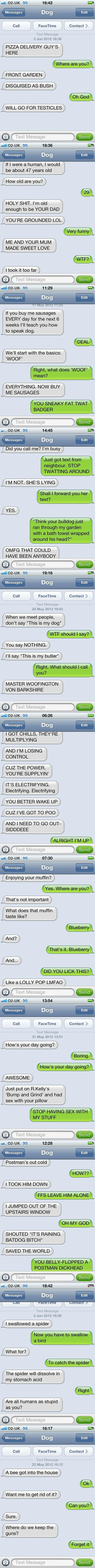 Roared Laughing! Needed this so much today!   Texts from Dog.
