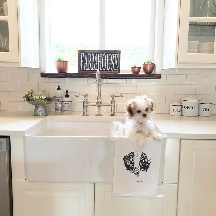 I Spy our Enamal Canister Set behind that adorable puppy! Thanks for including us in your #kitchen Sarah! #homedecor
