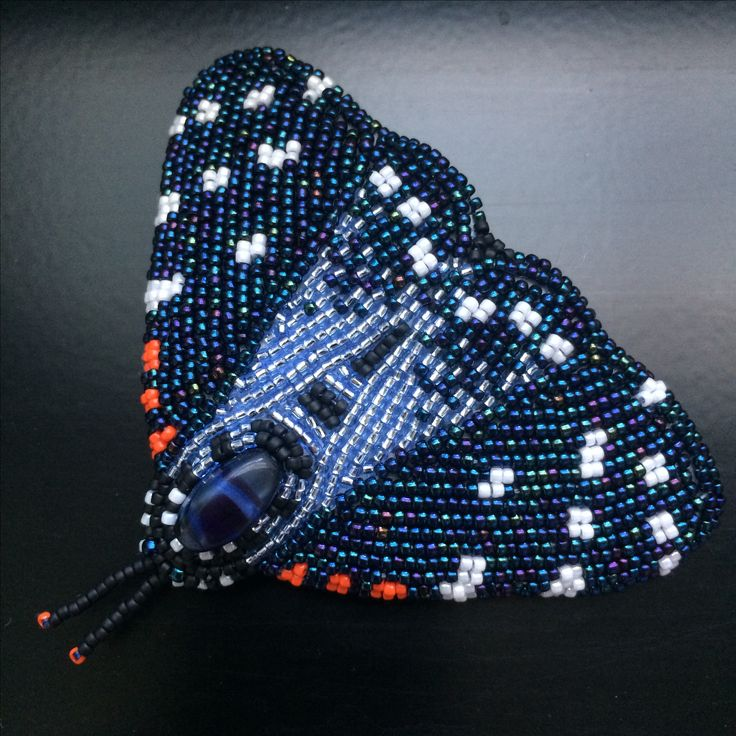 BW69 Faithful beauty moth (composia fidelissima): Bead-embroidered brooch