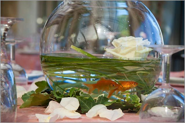 centerpiece-with-red-fishes-and-flowersIdeas, Centerpiece Wedding, Tables Tops Decor, Wedding Tables Centerpieces, Fishbowl Centerpieces, Fish Centerpieces, Fish Bowls, Wedding Centerpieces, Tables Decor