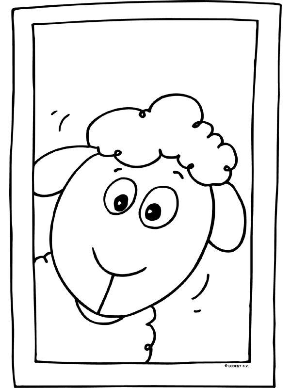 17 beste afbeeldingen lente schapen en lammetjes