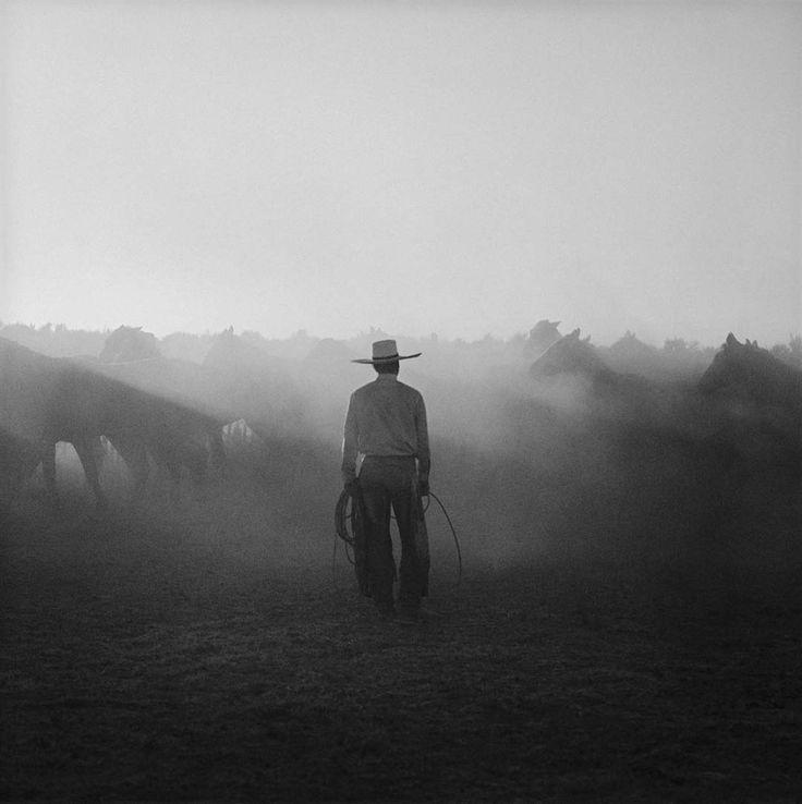 cowboy black and white fog foggy