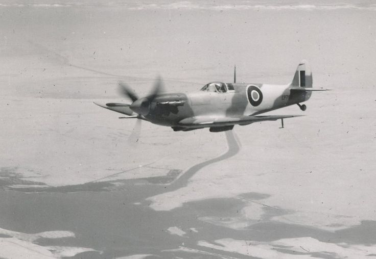SAAF Spitfire Vb over Suez Canal
