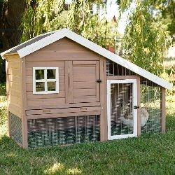 Fabulous DIY Chicken Coops Plans