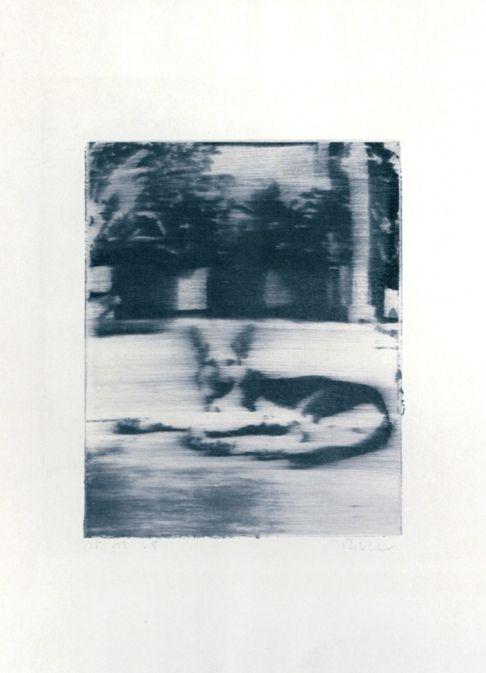 Герхард Рихтер Собака 1965