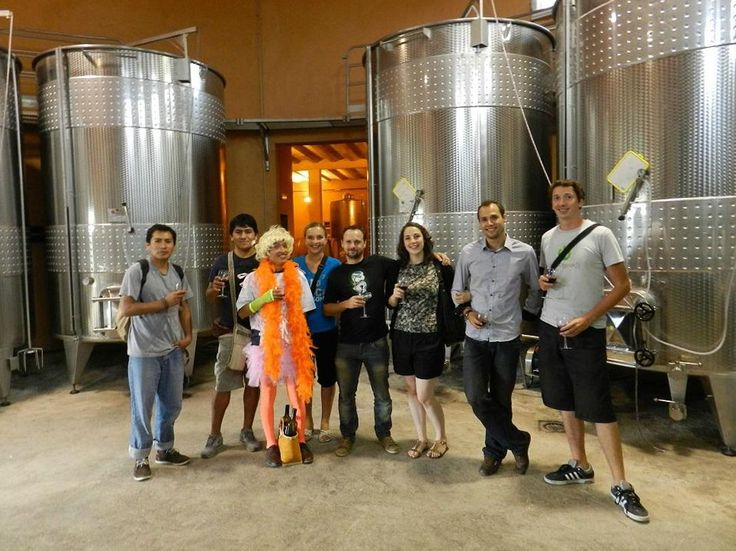 O'Vineyards Carcassonne wine tour and tasting party