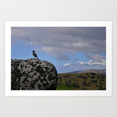 Bird over rock Art Print by Marcela Ponce - $18.72 Isla de Pascua