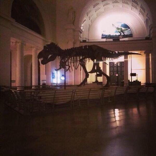 paleontology - Twitter Search
