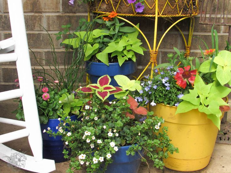 The Secret to Perfectly Composed Container Gardens – Container gardens