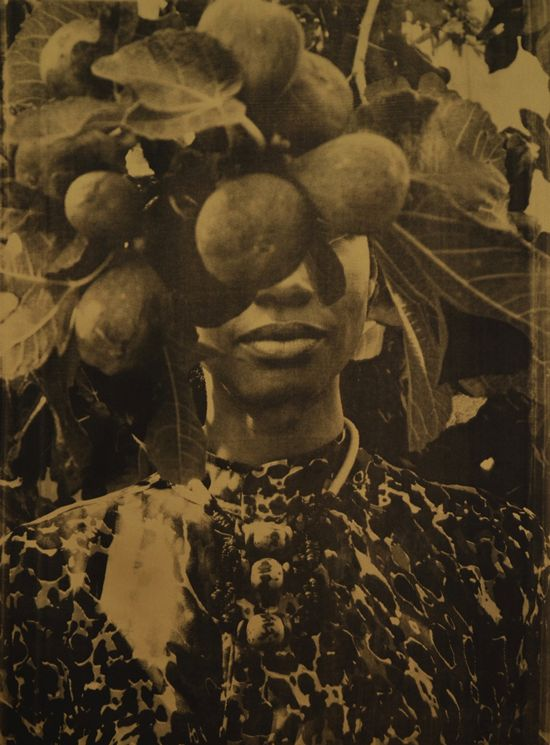 Zohra Opoku, 'Ficus Carica' (2015), Screen-print on fabric, 105 x 79cm, Edition of 3