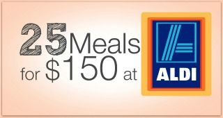 21 Meals for $150 at Aldi - Freezer Cooking Edition - I am THAT Lady