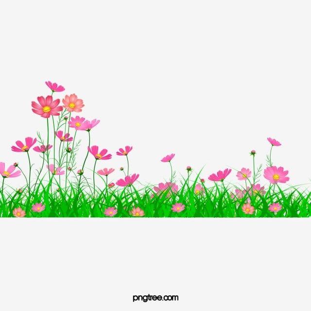 Belo Jardim Aster Linda Aster Jardim Imagem Png E Psd Para Download Gratuito Flower Garden Drawing Garden Clipart Poster Background Design Garden background png hd images