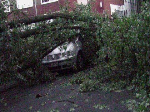 Sturmschäden in Gelsenkirchen