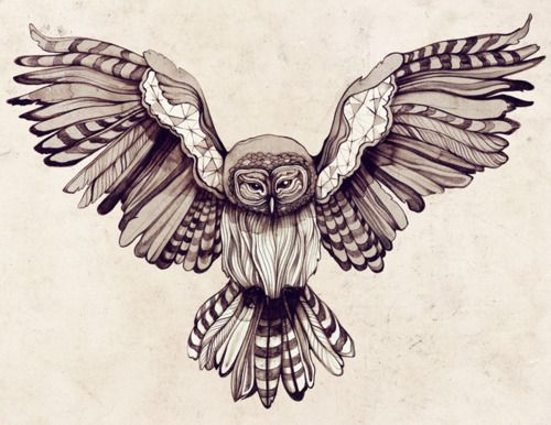 Flying owl. Would definitely be a nice tattoo *inspiration*