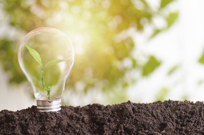 Mint Energie : 1er fournisseur d'électricité verte et low cost