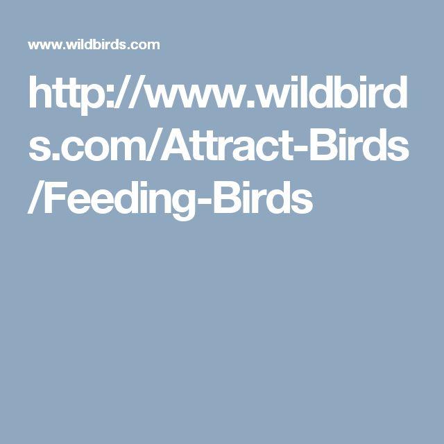http://www.wildbirds.com/Attract-Birds/Feeding-Birds