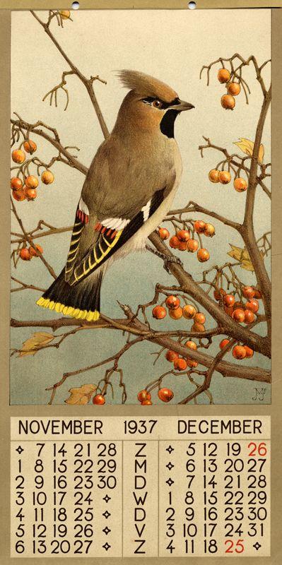 ¤ 1937 - November December  1 calendar, 6 leaves : col. ill. ; 39 x 20 cm. Créateur:Voerman, Jan, Jr. ( illustrator )